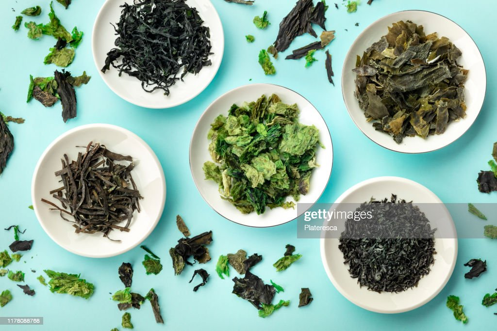 Various dry seaweed, sea vegetables, shot from above on a teal background : Stock Photo