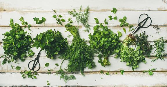 Various fresh green kitchen herbs 919410030