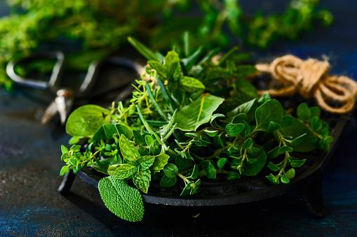 Various fresh herbs - gettyimageskorea