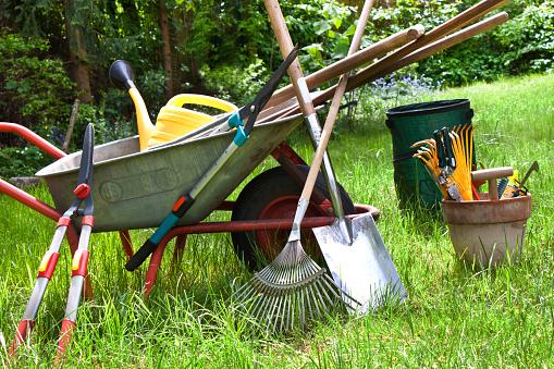Various gardening tools in the garden 1128479561