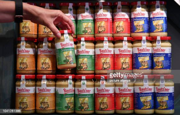 Various kinds of mustard in jars can be seen for sale at the meat market in the Bautzener Senfladen Manufactory and Museum in BautzenGermany 01...