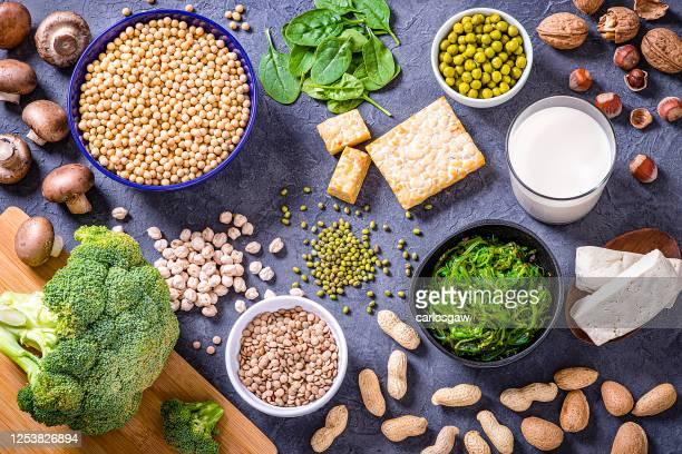 様々な種類のビーガンタンパク質源 - テンペ ストックフォトと画像