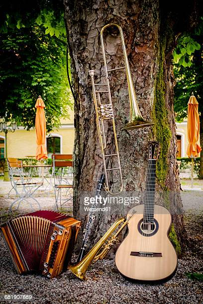 various musical instruments leaning at tree in a beer garden - accordion instrument stock pictures, royalty-free photos & images