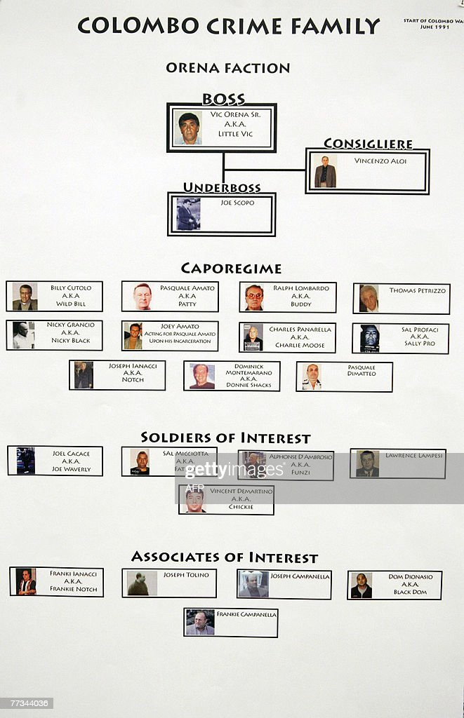 Various organized crime flow charts pres : News Photo
