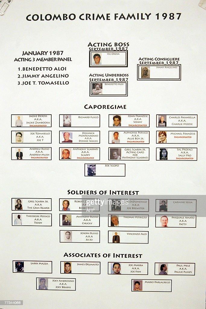 Various organized crime flow charts pres : News Photo