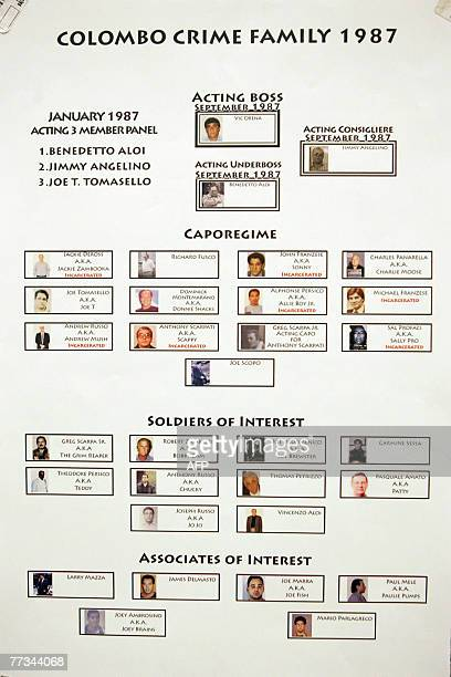 Various organized crime flow charts presented into evidence at the trial of Roy Lindley DeVecchio 15 October 2007 in the Brooklyn borough of New York...