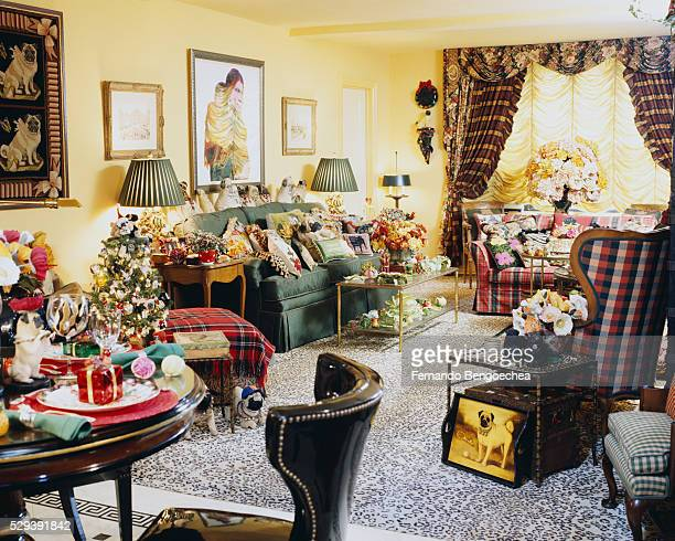Various Patterns in Living Room with Christmas Decorations