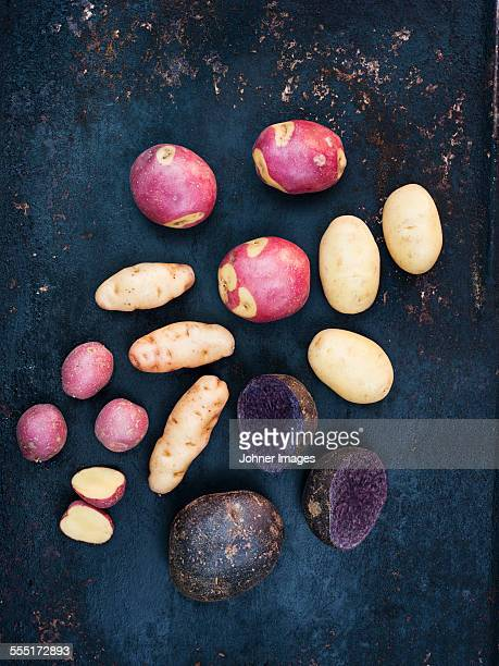 Various potatoes on blue background