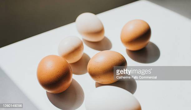 various sized eggs on a white surface casting shadows - egg stock pictures, royalty-free photos & images