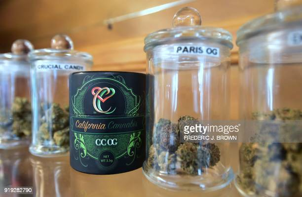 Various strains of medical marijuana available for recreational use on display at Virgil Grant's dispensary in Los Angeles California on February 8...