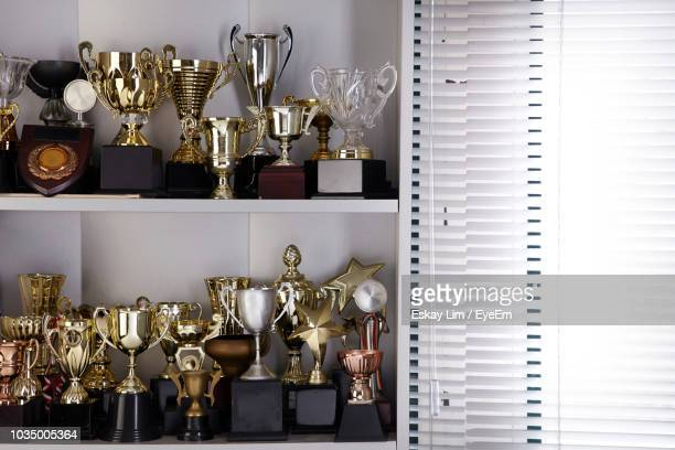 various trophy in shelf at home - eyeem collection stock pictures, royalty-free photos & images