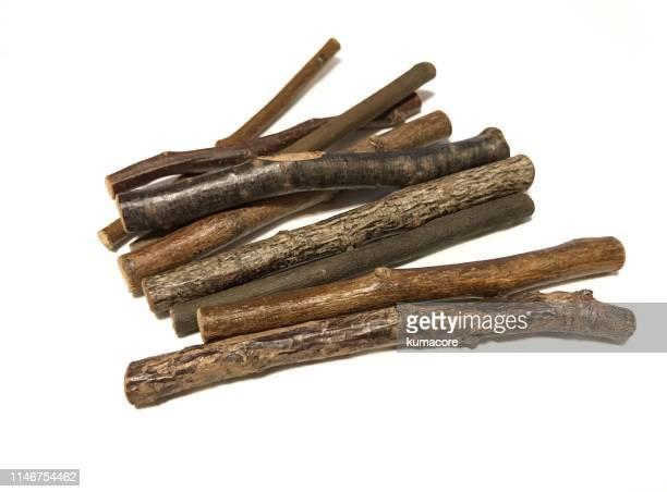 various twigs - ast pflanzenbestandteil stock-fotos und bilder
