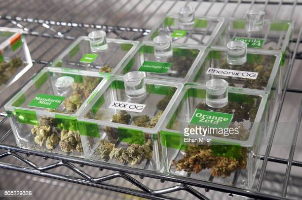 Various types of cannabis are displayed at Essence Vegas Cannabis Dispensary before the midnight start of recreational marijuana sales on June 30,...