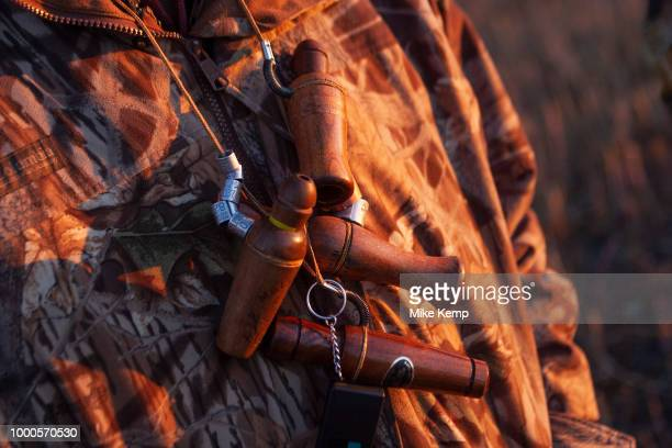 Various types of ducks callers while duck hunting at dawn on a hilltop southeast of Minot North Dakota United States The duck hunters travel in the...