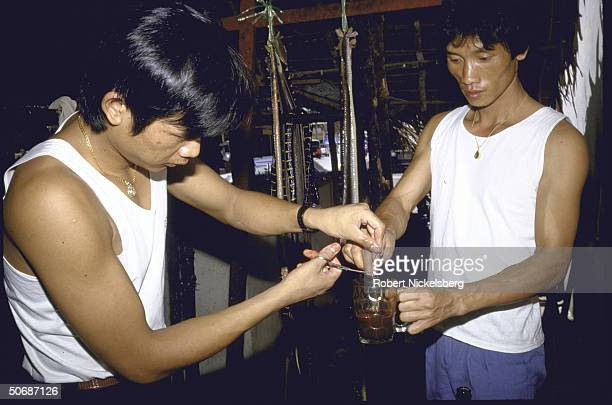 Various views of men mixing snake blood and gall bladder withThai whiskey and Chinese herbs to make aphrodisiacs rheumatism cure and skin enriching...