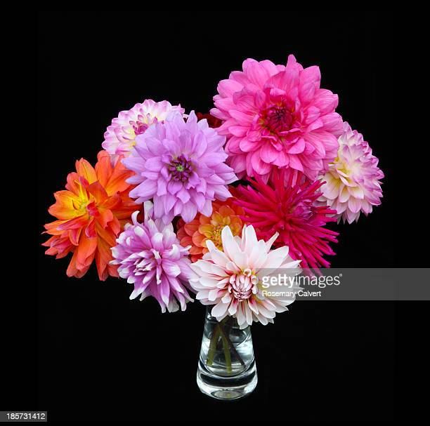 Vase filled with bright coloured dahlias