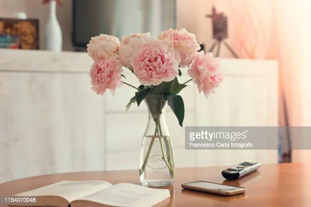 vase of peonies in the living room - couchtisch stock-fotos und bilder