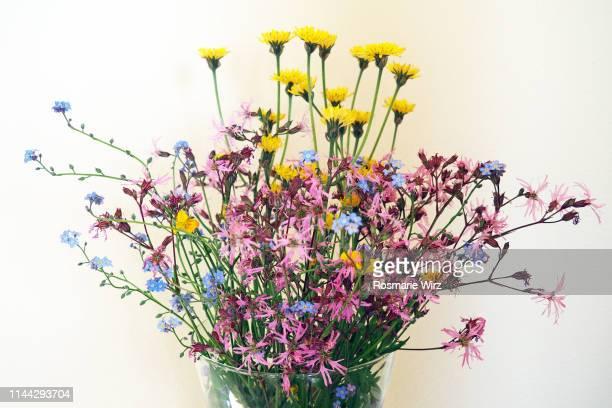 vase with wild flowers against white background - mazzi fiori di campo foto e immagini stock