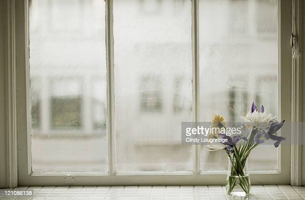 Vased flowers on sill of apartment window