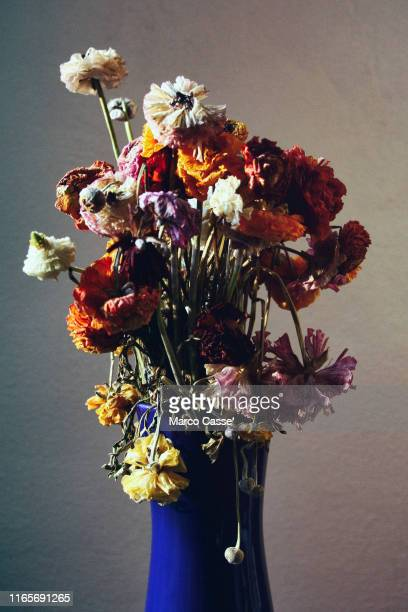 vaso di fiori - wilted stock pictures, royalty-free photos & images