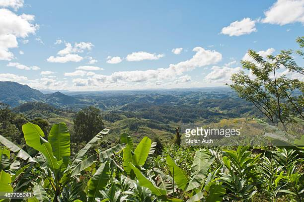 Vast mountainous landscape with banana trees at front, near Manakara, Madagascar