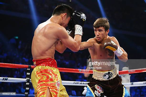 Vasyl Lomachenko of the Ukraine punches Chonlatarn Piriyapinyo of Thailand during the WBO Featherweight world title fight at The Venetian on November...