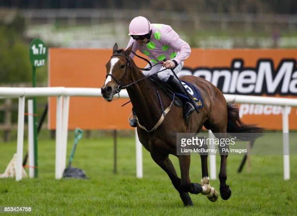 Vautour ridden by Ruby Walsh wins The Tattersalls Ireland Champion Novice Hurdle during day four of the Punchestown Festival at Punchestown...