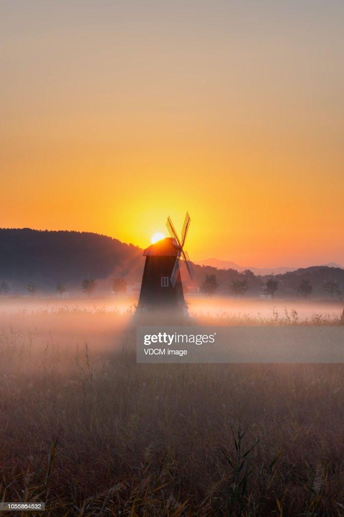 Vd 701  Sunrise : Stock Photo