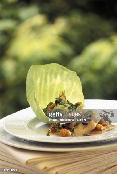 veal sweetbreads with oregano,young green cabbages - cavolo cappuccio verde foto e immagini stock