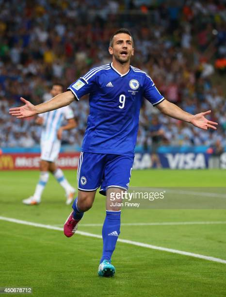 Vedad Ibisevic of Bosnia and Herzegovina celebrates scoring his team's first goal during the 2014 FIFA World Cup Brazil Group F match between...