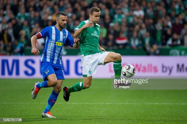 Vedad Ibisevic of Hertha BSC and Niklas Moisander of Werder Bremen battle for the ball during the Bundesliga match between SV Werder Bremen and...