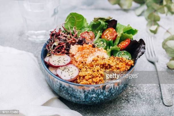 vegan buddha bowl with hummus, quinoa with curry, lettuce, sprouts, green and red cherry tomatoes, sliced radish and sesame and poppy seeds - quinoa stock pictures, royalty-free photos & images