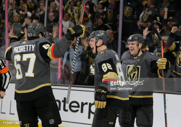 Vegas Golden Knights defenseman Nate Schmidt celebrates with team mates after scoring a goal against the Arizona Coyotes during a regular season game...
