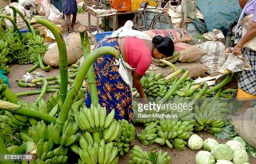 Vegetable Market Chalai Trivandrum Kerala India Asia Stock ...Kerala Vegetable Market