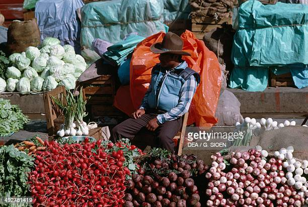 Vegetable seller in a market in stall Chiapas Mexico