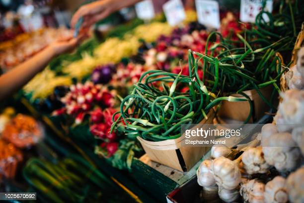 vegetables at the market - crucifers stock pictures, royalty-free photos & images
