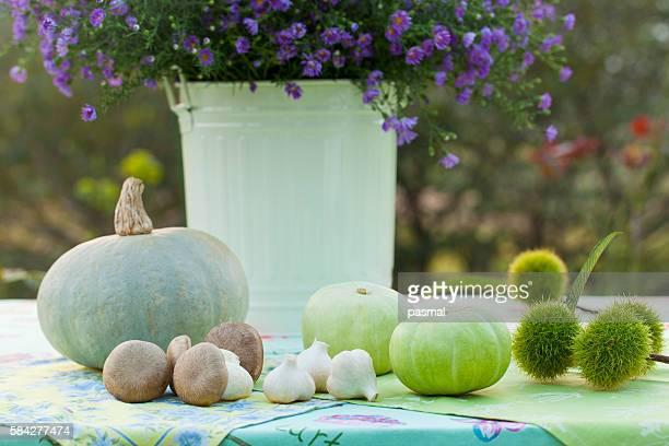 Vegetables Beside Vase of Frost Aster