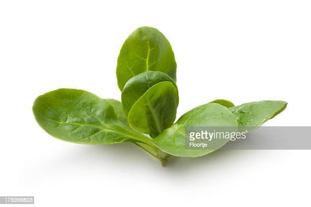 Gemüse: Feldsalat