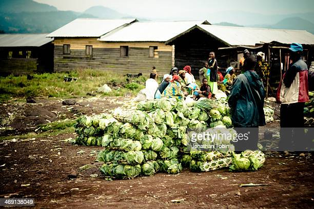CONTENT] Vegetables for sale on the roadside This is lettuce