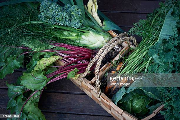 Vegetables in basket, high angle view