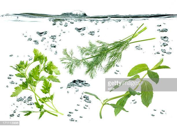 Vegetables Underwater