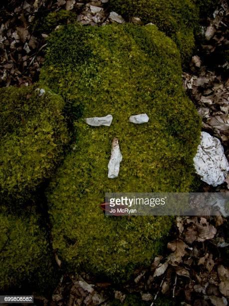 vegetal mask - mousse végétale photos et images de collection