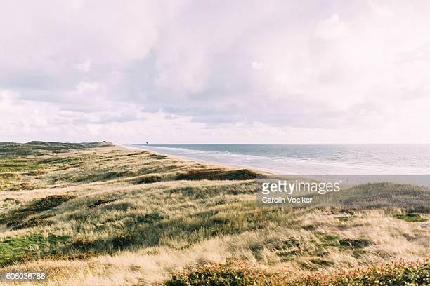 Vegetated sand dunes at Sylt alongside the North Sea