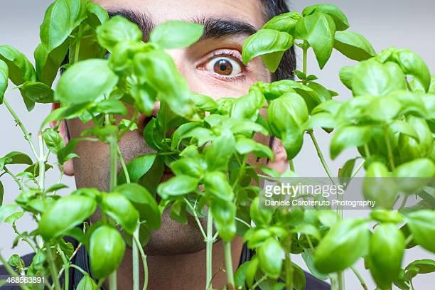 veggie man - daniele carotenuto stock-fotos und bilder