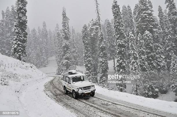 59 Gulmarg Tangmarg Pictures, Photos & Images - Getty Images