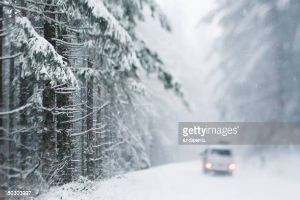 vehicle on snowy forest road - snow storm stock photos and pictures