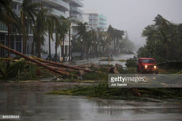 A vehicle passes downed palm trees and two cyclists attempt to ride as Hurricane Irma passed through the area on September 10 2017 in Miami Beach...