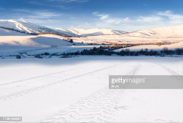vehicle tracks in snow towards tianshan mountains,xinjiang - snowfield stock pictures, royalty-free photos & images
