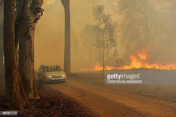 A vehicle tries to flee a bushfire near the town of Rylstone northwest of Sydney on November 22 2009 Hundreds of residents in eastern Australia were...