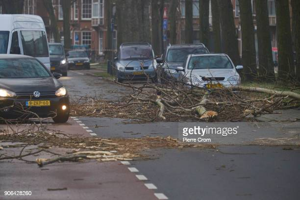 Vehicles drive around branches as a hurricaneforce storm blows galewinds up to force 12 on January 18 2018 in The Hague Netherlands The Dutch...